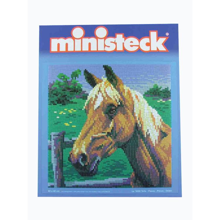 Ministeck Paard