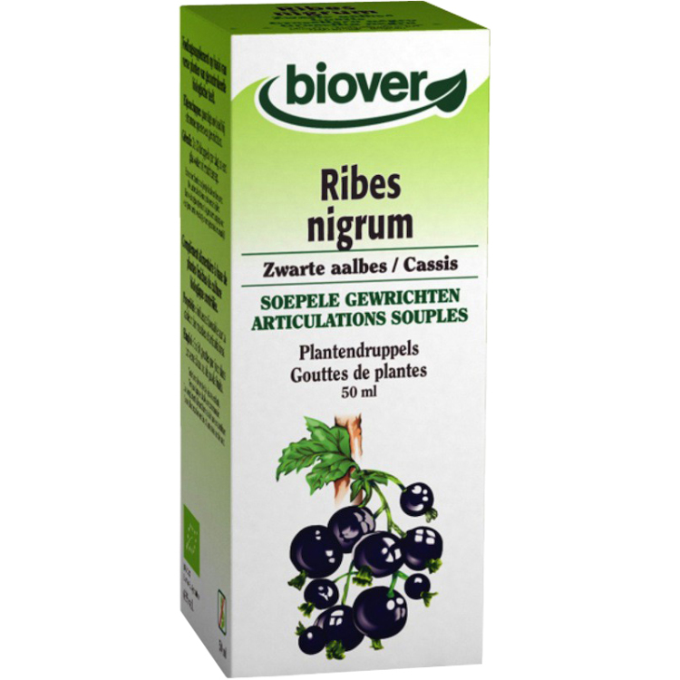 Image of Ribes Nigrum Plantendruppels, 50 Ml