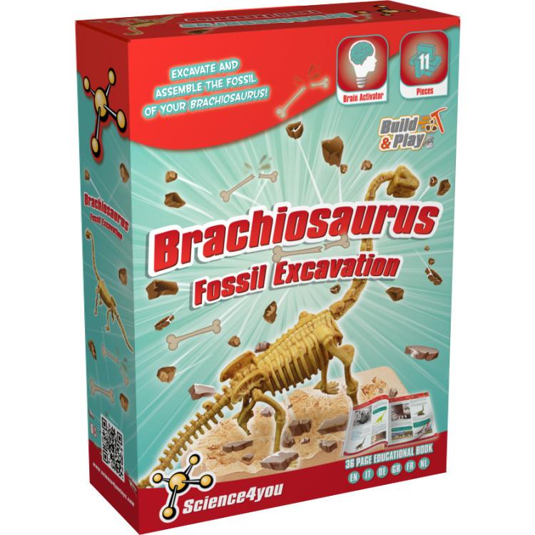 Image of Brachiosaurus Fossil Excavation