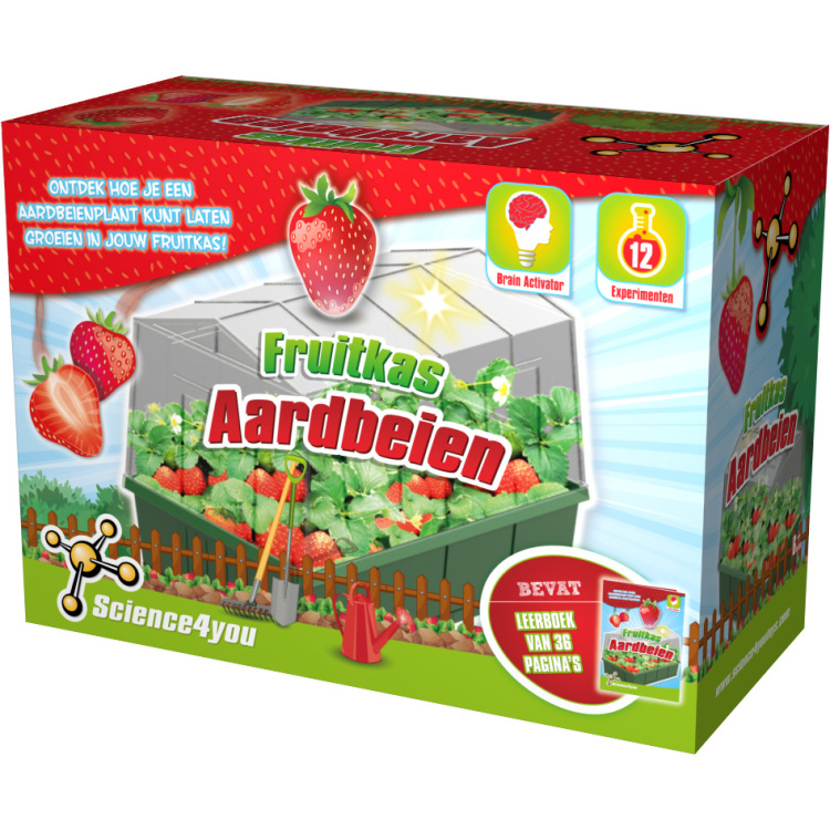 Fruitkas - Aardbeien