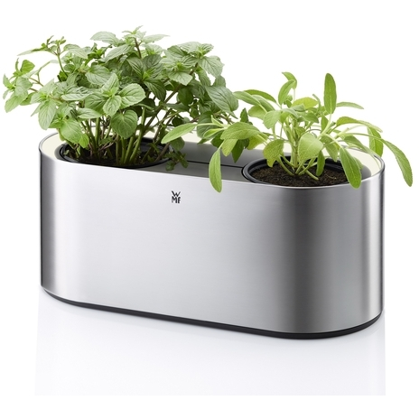 Ambient Herbs Home