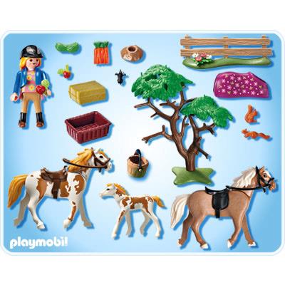 5227 Paddock met paardenfamilie