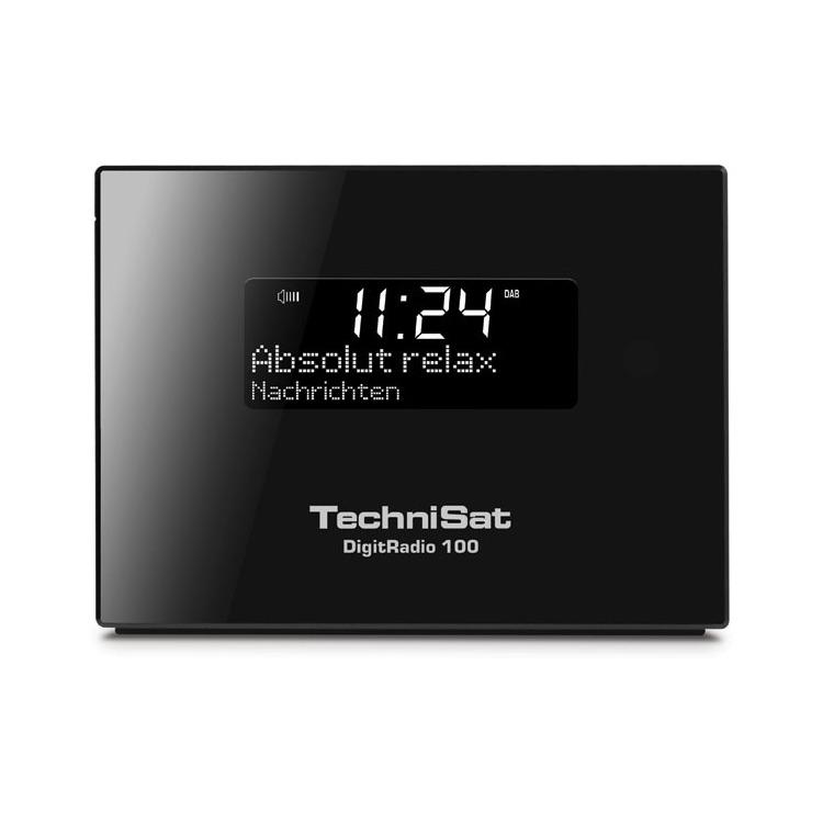 Technisat DigitRadio 100