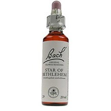 Image of Star Of Bethlehem / Vogelmelk Bach 20 ML