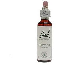 Image of Mustard / Herik Bach 20 ML