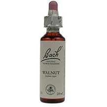 Image of Walnut / Walnoot Bach 20 ML