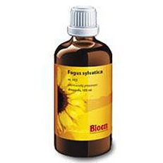 Image of Bloem Fagus Sylvatica 432 100Ml 100ml