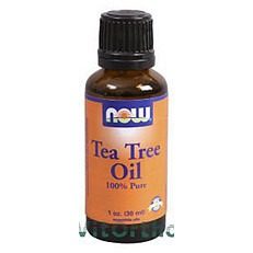 Now Tea Tree Olie - 30 ml - Etherische Olie