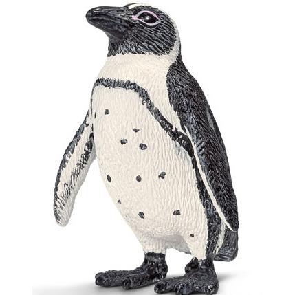 Afrikaanse Pinguin