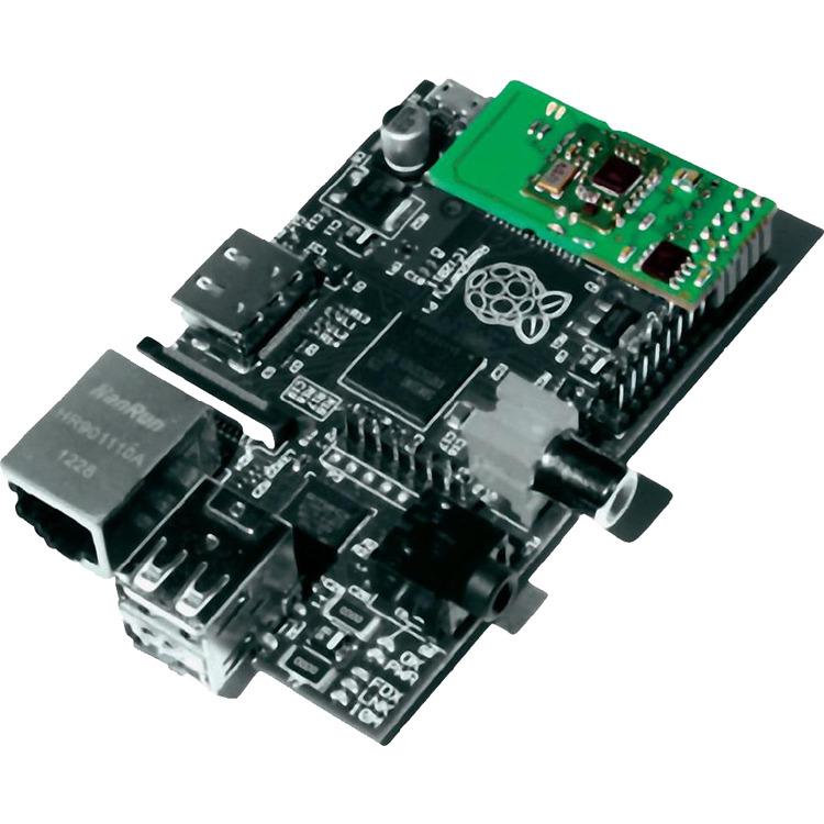 Razberry Module