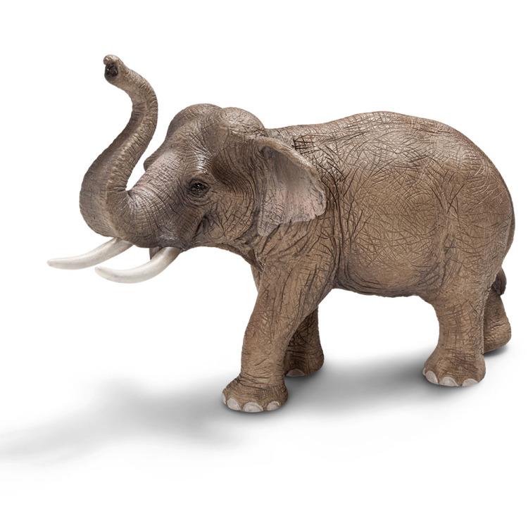 Schleich Aziatische olifant mannetje