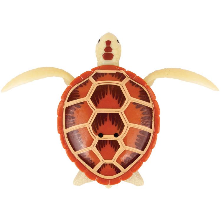 Image of Goliath Robo Turtle bruin