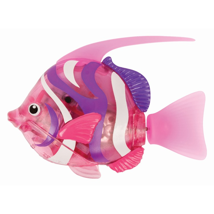 Image of Goliath - robo fish: deep sea bannerfish, pink
