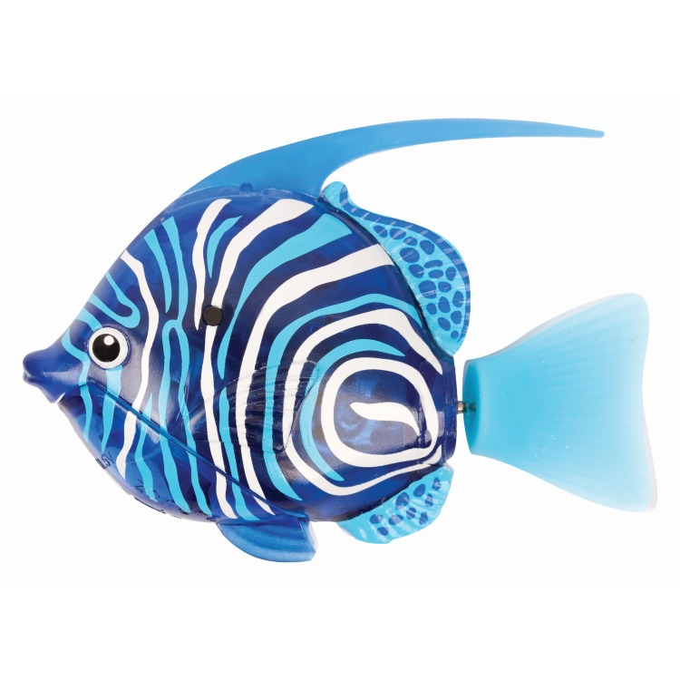 Image of Goliath - robo fish: deep sea bannerfish, blauw